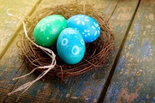 Easter, Easter, holiday, Board, the nest, EGGS, eggs