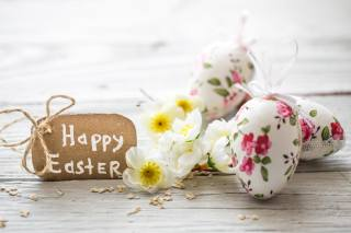 Easter, Easter, holiday, Board, decor, EGGS, twig, flowers, карточка, овсянка, flakes