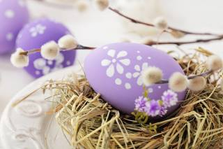 Easter, holiday, straw, the nest, EGGS, eggs, branches, willow