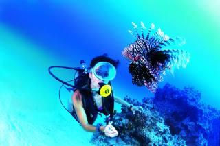 девушка, фото, под водой, рыба