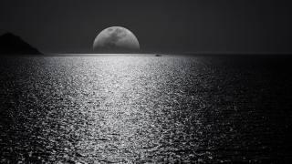 the moon, sea, night