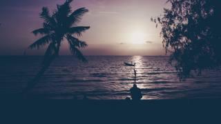 вечер, пальмы, люди, отдых, океан