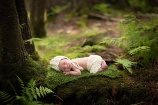 Anneli Rose, child, baby, baby, sleep, beanie, штанишки, blanket, forest, trees, moss, fern