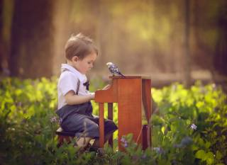 child, boy, baby, nature, flowers, piano, bird, Parrot
