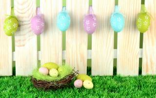 velikonoce, svátek, desky, tráva, VEJCE, крашенки, plot, hnízdo, Velikonoce