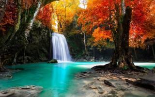 пейзаж и природа обои » красочный, trees, waterfall, nature, tropical, L