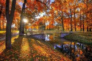 эдуард гордеев, Эд Гордеев, Гордеев Эдуард, природа, осень, пейзаж, деревья, парк, канал, мостик, солнце, лучи