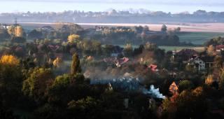 nature, landscape, meadows, field, the village, trees, fog