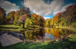 осень, озеро, пруд, парк
