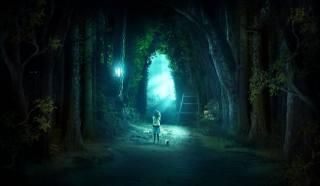 Вечерняя прогулка с кошкой, fantasy