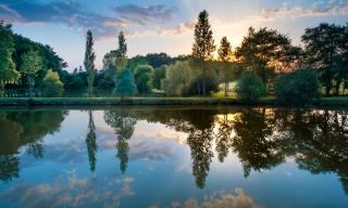 природа, краєвид, парк, дерева, КУЩІ, ставок, вода, захід