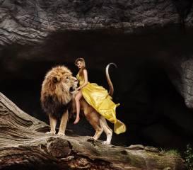девушка, лев, дерево, ствол, фотоманипуляция