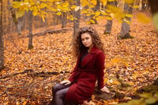 девушка, Алина Заславская, осень, проф фото