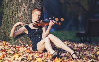 violin, tree, music
