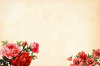 květiny, kytice, pozadí, minimalismus