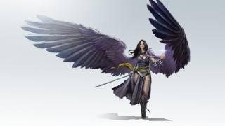 lass, Warrior, art, the way, wings, angel, creative