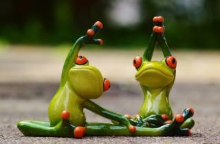 frogs, fantasy, macro photo, creative, charging