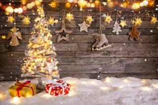 vánoční strom, svátek