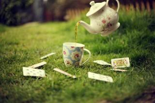 map, grass, greens, lawn, tea, Cup, kettle