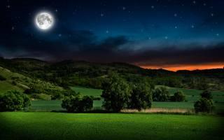 noc, měsíc, небо звезды, stromy, tráva