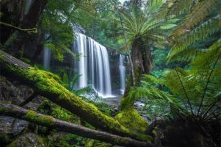 nature, waterfall, cascade, Тасмания