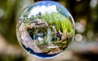 reflection, glass ball, Oslo, Botanical, garden, Norway, macro