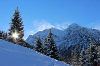 nature, landscape, mountains, the slope, trees, ate, forest, winter, snow, the sun, rays