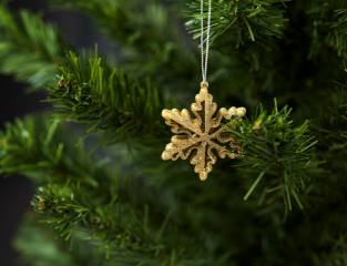 holiday, New year, Christmas, branches, tree, toy, snowflake