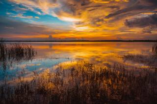 sea, the sky, water, clouds, sunset, the lake, golden, gold, sky, sea, sunset, water, lake, reflection