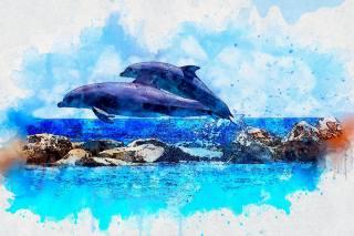 дельфины, рифы, море, 3d