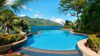 sea, pool, resort, palm trees, tropical