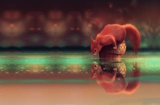 stream, reflection, art, Animal, animal, acorn, Cyril Rolando