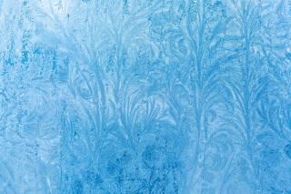 Ледяной узор, Форма цветка, snow