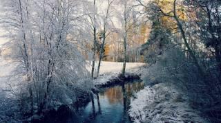 река, зима, деревья, лес, пейзаж