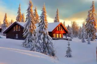 природа, зима, снег, деревья, ели, дом