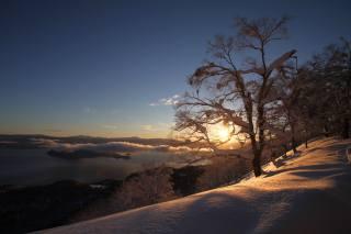 природа, пейзаж, зима, холмы, море, островок, деревья, склон, облака, утро
