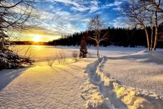 природа, пейзаж, зима, снег, деревья, лес, солнце, лучи