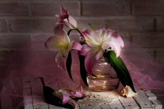 box, desky, banky, květiny, lilie, ubrousek, tkanina, závoj, shell, zeď, cihly