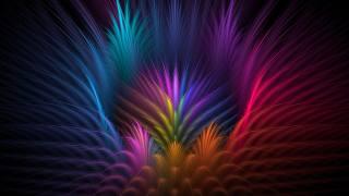 peří, květ, okvětní lístky, PAPRSKY, linka, objem, symmetry
