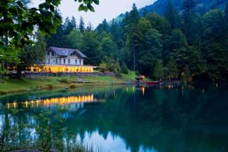 Швейцария, альпы, горы, Леса, красиво
