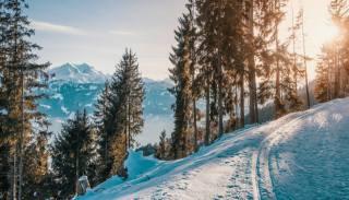 зима, лес, снег, горы, лыжня