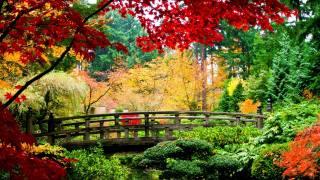 природа, осень, парк, деревья, цветы, КУСТЫ, река, небо, мостик