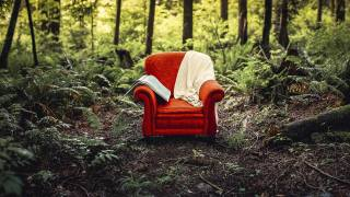 кресло, природа, тема, фото, креатив
