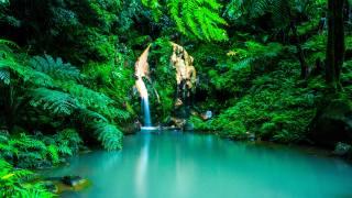 Азорские острова, водопад, Оазис, лес, Португалия