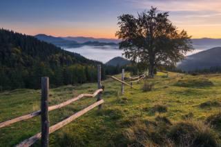 облака, пейзаж, горы, природа, дерево, холмы, ограждение, Леса, Карпаты, бук, Дин Зарго, Zargo Dinn