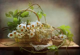 stůl, ubrousek, košík, košík, květiny, heřmánek, liana, listy, spikes, ořechy, figurka, bílkoviny