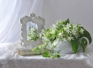 натюрморт, КРУЖЕВА, цветы, зеркало, отражение, рулон, ноты, занавеска