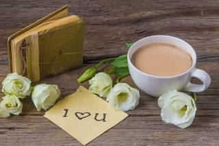 чашка, альбом, цветы, эустома
