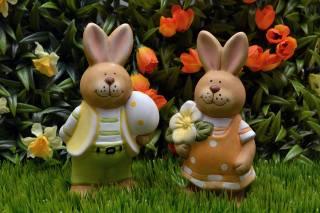 tráva, květiny, tulipány, narcisy, figurky, zajíci, velikonoce, svátek