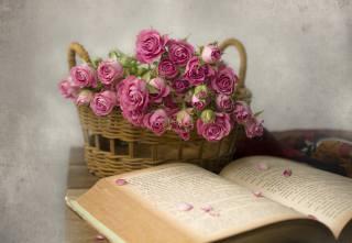 košík, květiny, růže, kniha, okvětní lístky